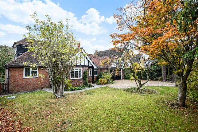 Thumbnail Detached bungalow to rent in Chartridge Lane, Chesham