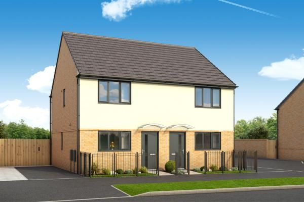 "Thumbnail Property for sale in ""The Ashmore At Roman Fields "" at Chamberlain Way, Peterborough"