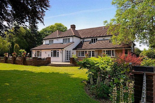 Thumbnail Detached house to rent in Rushmore Hill, Knockholt, Sevenoaks