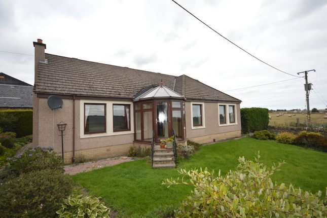 Thumbnail Detached house to rent in Strathmartine, Angus, Dundee