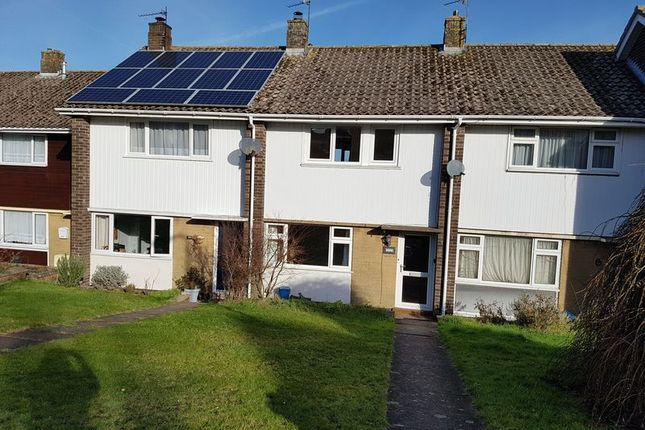 Thumbnail Property to rent in Woodbury Park, Axminster