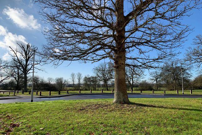 Image of Castle Hedingham, Trowbridge BA14