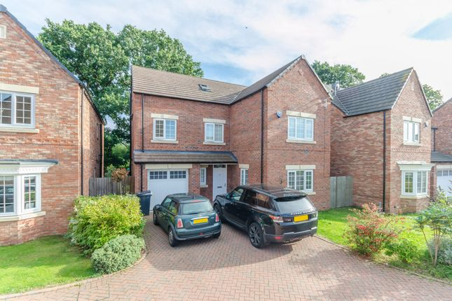 Thumbnail Detached house to rent in Bursary Court, Dringhouses, York