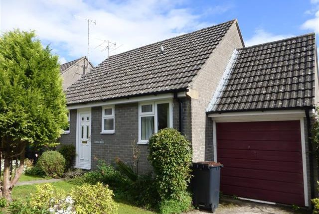 Thumbnail Bungalow to rent in Whites Close, Piddlehinton, Dorchester