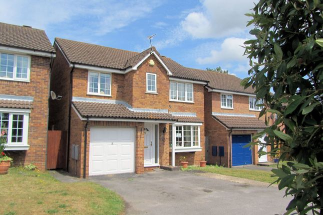 Thumbnail Detached house to rent in Stirling Crescent, Hedge End, Southampton
