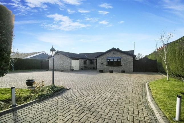 Thumbnail Bungalow for sale in Parklands, Darras Hall, Northumberland