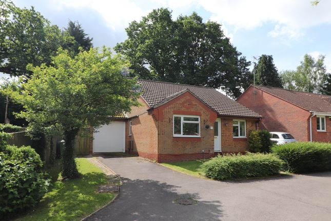 Thumbnail Detached bungalow for sale in Mallow Road, Hedge End, Southampton