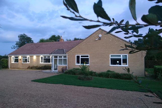 Thumbnail Bungalow to rent in The Fen, Baston, Peterborough