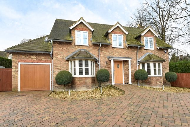 Thumbnail Detached house to rent in Privet Mews, Purley