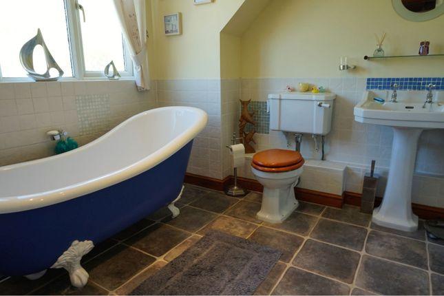 Bathroom of The Street, Sturmer CB9