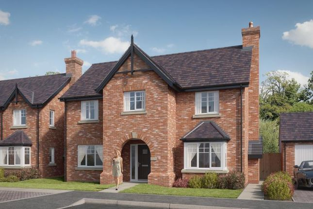 Thumbnail Detached house for sale in Off Hills Lane Drive, Belvidere, Shrewsbury