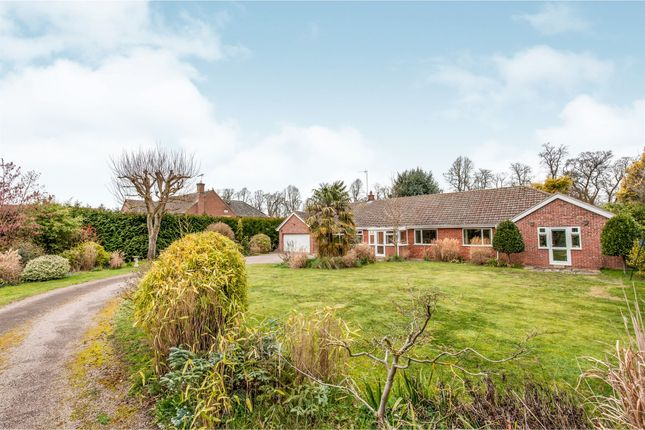 Thumbnail Detached bungalow for sale in Church Street, Exning, Newmarket