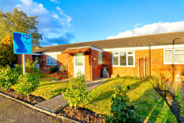 Thumbnail Bungalow for sale in Bath Road, Willesborough, Ashford