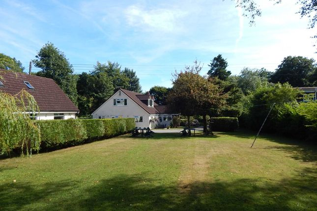 Thumbnail Detached house for sale in Charmouth Road, Raymonds Hill, Axminster