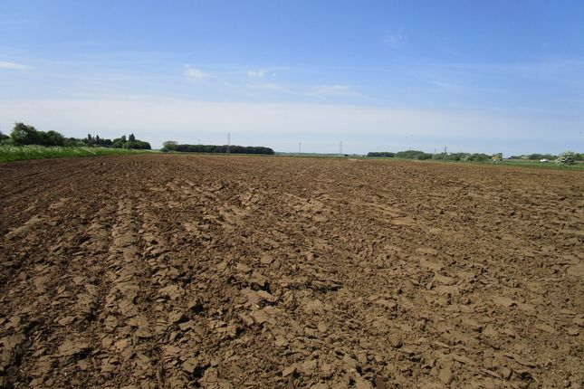 Thumbnail Farm for sale in Messingham, Scunthorpe