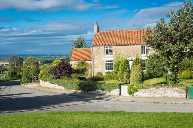 Thumbnail Cottage for sale in Wilton, Pickering