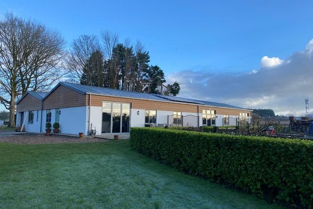 Office to let in Modern Office/Business Suites, Tusker Barns, Newton, Porthcaw