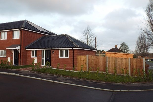Thumbnail Bungalow to rent in Greenwood Road, Norwich