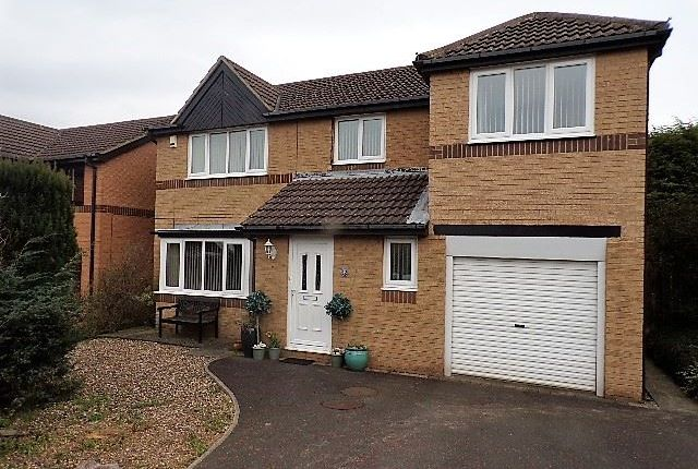 Thumbnail Detached house for sale in Broom Wood Court, Prudhoe
