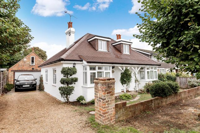 Thumbnail Detached bungalow for sale in Manor Road, Ripley, Woking