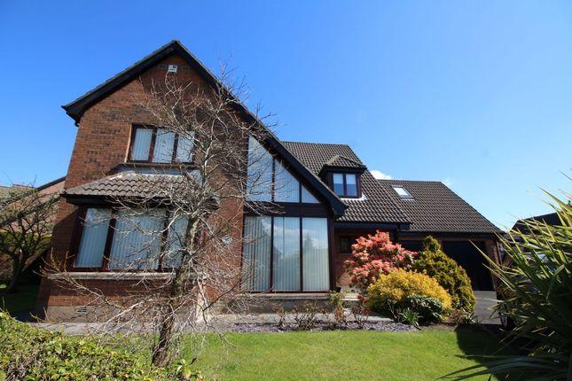Thumbnail Detached house for sale in Shorelands, Greenisland