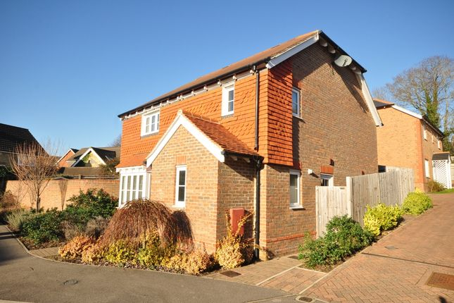 Thumbnail Detached house to rent in Treetops, Billingshurst