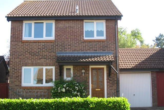 Thumbnail Property to rent in Allenwater Drive, Fordingbridge, Hampshire