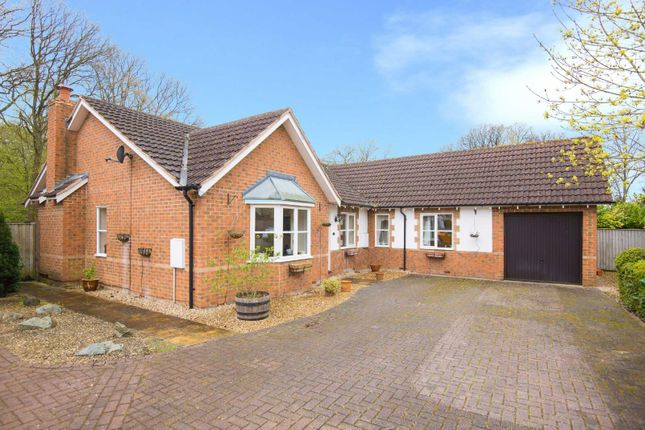 Thumbnail Detached bungalow for sale in Randalls Walk, Bricket Wood, Hertfordshire