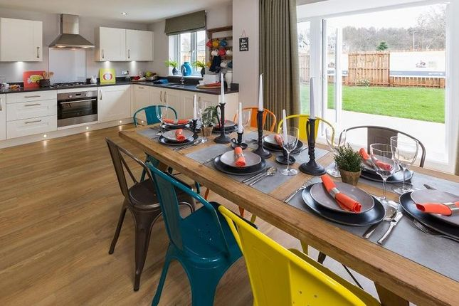 "Thumbnail Detached house for sale in ""Cullen"" at Victoria Street, Monifieth, Dundee"