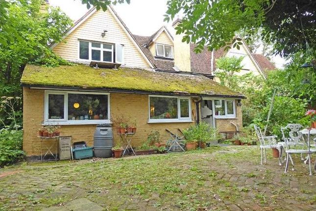 Thumbnail Cottage for sale in Little Glebe, Spring Lane, Lexden, Colchester