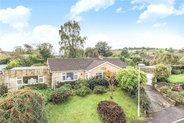Thumbnail Detached bungalow for sale in Springfield, Cerne Abbas, Dorchester, Dorset