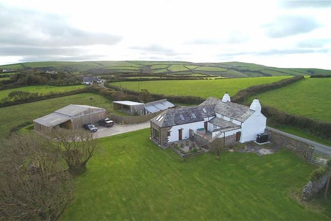 Thumbnail Detached house for sale in Crackington Haven, Bude
