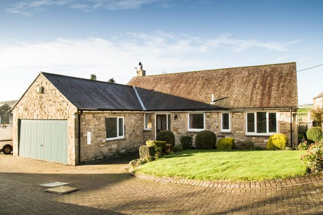 Thumbnail Bungalow to rent in 4 West Farm Court, Wall, Northumberland