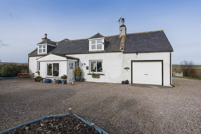 Thumbnail Cottage for sale in Inverugie, Peterhead, Aberdeenshire