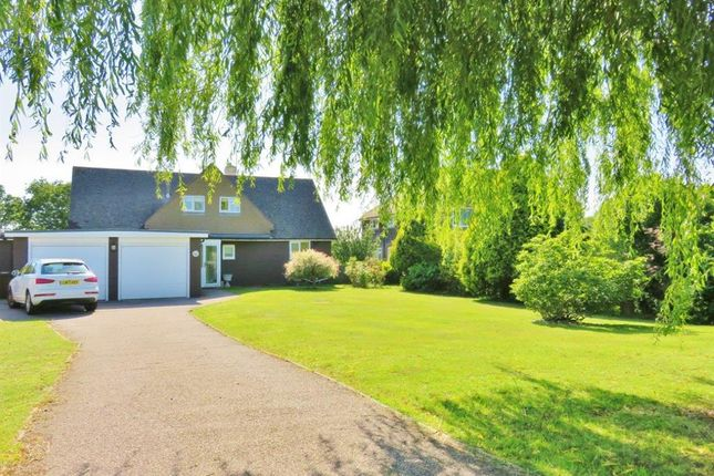 Thumbnail 4 bed detached house for sale in Clavering Walk, Bexhill-On-Sea, East Suss