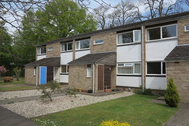 Thumbnail Maisonette to rent in Larch Drive, Woodley, Reading