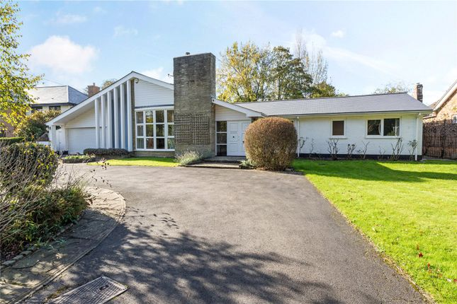 Thumbnail Detached bungalow for sale in Chauntry Road, Maidenhead, Berkshire