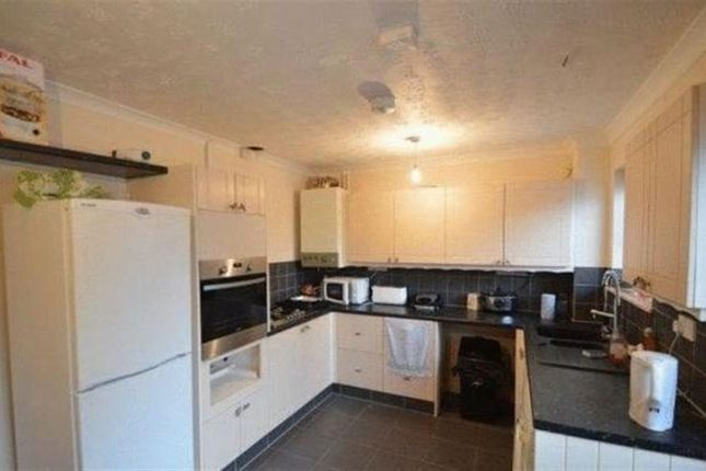 Thumbnail Property to rent in Holworthy Road, Norwich