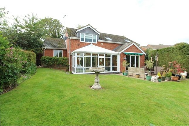 Thumbnail Detached house for sale in Spring Close, Lutterworth
