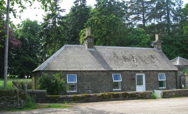 Thumbnail Detached house to rent in Eassie, Forfar