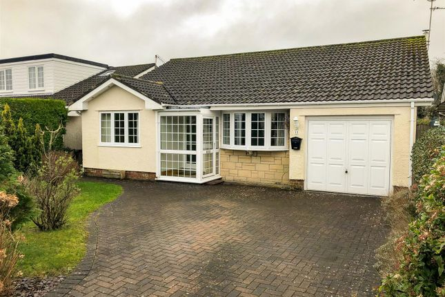 3 bed bungalow to rent in Elm Park, Crundale, Haverfordwest SA62