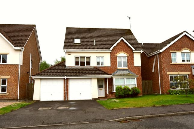Thumbnail Detached house to rent in Strathallan Avenue, East Kilbride, Glasgow