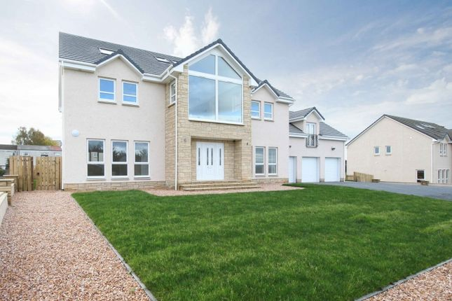Thumbnail Detached house for sale in Livingstone Rise, Glenbrae, Falkirk, Stirlingshire