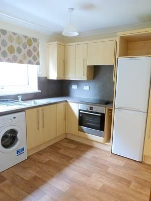 Thumbnail Semi-detached house to rent in Paradise Place, Perth