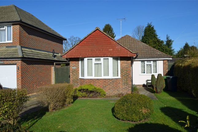 Thumbnail Detached bungalow for sale in Bedford Crescent, Frimley Green, Surrey