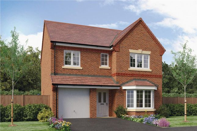 "Thumbnail Detached house for sale in ""Whitwell"" at Oteley Road, Shrewsbury"