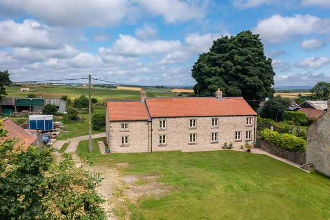 Thumbnail Detached house for sale in Cold Kirby, Thirsk