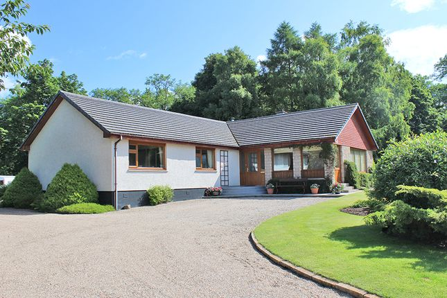 Thumbnail Bungalow for sale in Raitloan, Geddes, Nairn