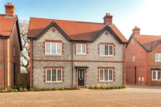 Thumbnail Detached house for sale in Farriers Rise, Bishops Lane, Ringmer, East Sussex