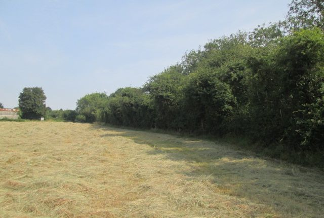 Land for sale in Hitches Piece Road, Haddenham CB6